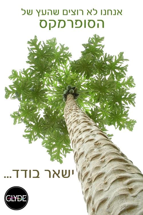 גלייד ישראל נלחמים להצלת האמזונס