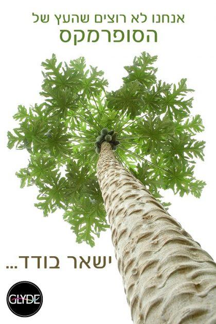 גם גלייד ישראל מצטרפת למאמץ להצלת יער האמזונס